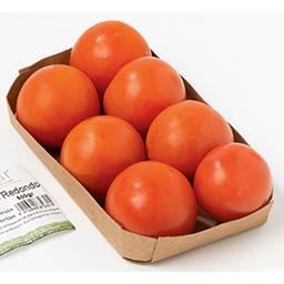 BIO Tomate ronde