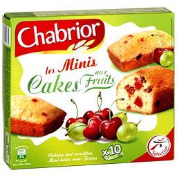 Les Minis Cakes aux fruits