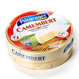 Camembert au lait pasteurisé 21%