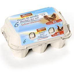 Œufs de poules élévées au sol - xl