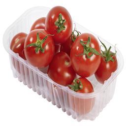 Tomate roma ravier 1 kg