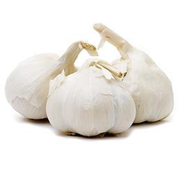 Ail blanc prenium