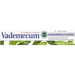 Vademecum Vademecum Dentifrice Blancheur & Plantes essence de menthe le tube de 75 ml