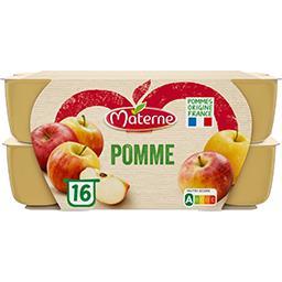 Materne Materne Compote pomme les 16 pots de 100 g