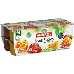 Andros Andros Dessert de fruits 4 variétés sans sucres ajoutés les 16 pots de 100 g