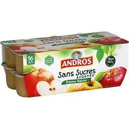 Andros Andros Dessert fruitier pomme nature sans sucres ajoutés les 16 pots de 100 g