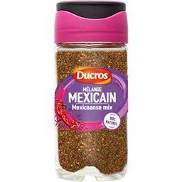 Assaisonnement Mélange Malin mexicain