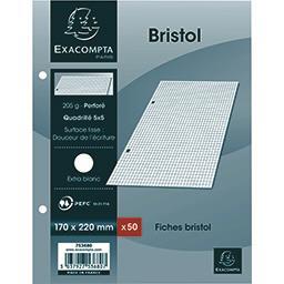 Exacompta Exacompta Fiches bristol blanches perforés 170x220 5x5 205 g le paquet de 50 fiches