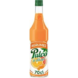 Pulco Pulco Spécialité à diluer agrumes la bouteille de 70 cl