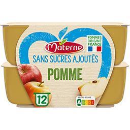 Materne Materne Sans Sucres Ajoutés - Spécialité de pomme les 12 pots de 100 g