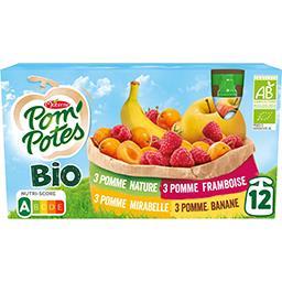 Materne Materne Pom'Potes BIO - Assortiment de compotes et spécialités de fruits BIO les 12 gourdes de 90 g