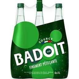 Badoit Badoit Eau minérale naturelle gazeuse les 6 bouteilles de 1 l
