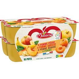 Materne Materne Assortiment de compote de pomme-pêche-abricot-banane les 16 pots de 100 g