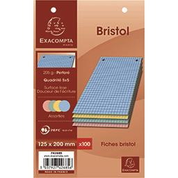 Exacompta Exacompta Fiches bristol couleur perforés 125x200 5x5 205 g le paquet de 100 fiches