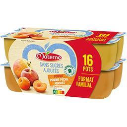 Materne Materne Sans Sucres Ajoutés - Assortiment spécialité pomme/pomme pêche/abricot les 16 pots de 100 g - Format familial