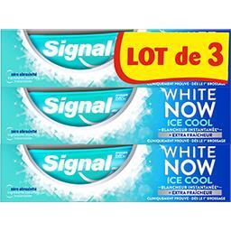 Signal White Now - dentifrice ice cool le lot de 3 tubes de 75ml
