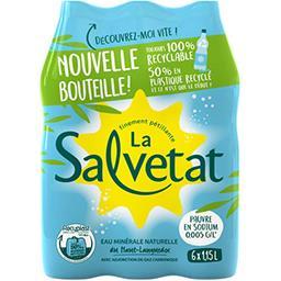 Salvetat Salvetat Eau minérale naturelle gazeuse les 6 bouteilles de 1,15 l
