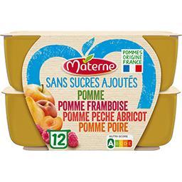 Materne Materne Sans Sucres Ajoutés - Assortiment spécialité pomme-framboise-pêche abricot-poire les 12 pots de 100 g