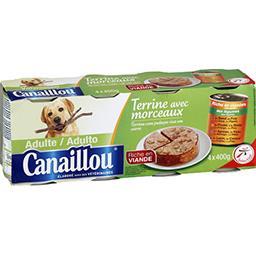Terrine à la viande et aux légumes avec morceaux pou...