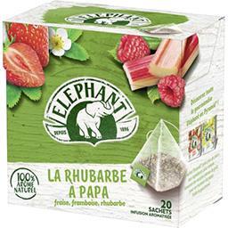 Infusion La Rhubarbe à Papa, fraise framboise rhubar...