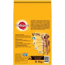 Vital Protection - Croquettes bœuf & légumes Adult
