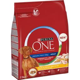 Purina One Purina One - Croquettes riche en poulet riz pour chien Medium/Maxi le sac de 2,5 kg