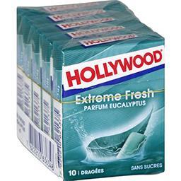 Hollywood Hollywood Chewing-gum Extreme Fresh parfum eucalyptus les 5 boites de 14 g