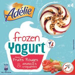 Crème glacée Frozen Yogurt sauce fruits rouges & amandes