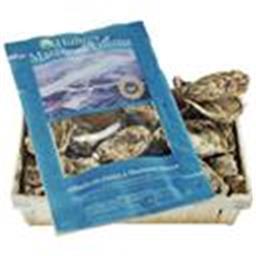 Huîtres fines de claire MARENNE OLERON N°1