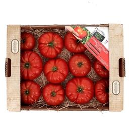 Tomates COTELEE ROUGE
