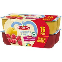 Materne Materne Sans Sucres Ajoutés - Spécialité pomme, pomme-framboise les 16 pots de 100 g - Format familial