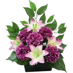 Chrysanthème lys en jardinière