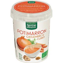 Soupe potimarron gingembre & curry BIO