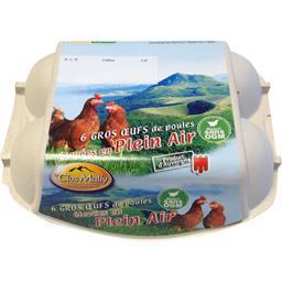 Gros œufs de poules élevées en Plein Air