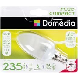 Ampoule flam fluo 6W E14