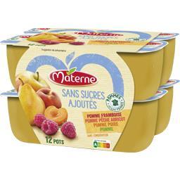 Materne Materne Sans Sucres Ajoutés - Assortiment spécialité pomme/framboise/pêche abricot/poire les 12 pots de 100 g