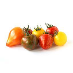 Tomates CERISES PANACHE