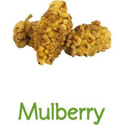 Mulberry BIO (Mulberries) en VRAC