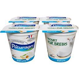 Pâturages Yaourt pur brebis nature les 4 pots de 125 g