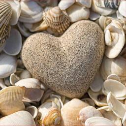 Serviettes 3 plis 33x33 cm Design Edition Stone Heart