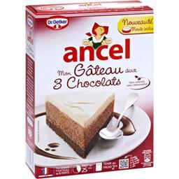 Mon gâteau aux 3 chocolats