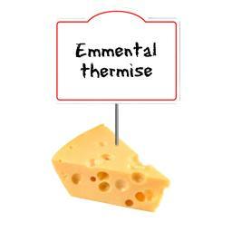 Emmental thermisé 29% de MG
