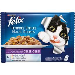 Tendres effilés viandes et poissons pour chat