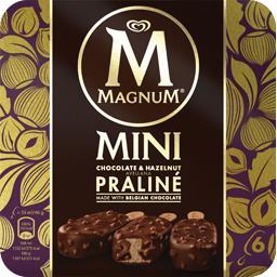 Mini glace chocolat praliné noisette