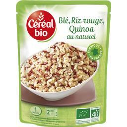 Blé, riz rouge, quinoa au naturel BIO