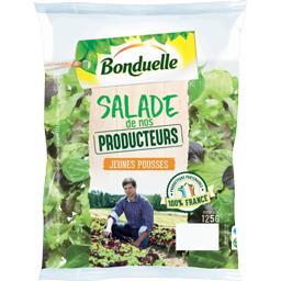 Salade de nos Producteurs jeunes pousses