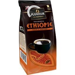 Café moulu Ethiopie