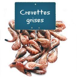 CREVETTES GROSSES grises cuites