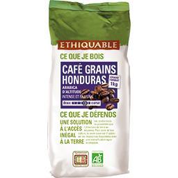 Café grains Honduras BIO