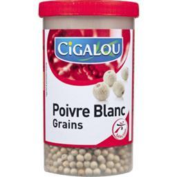 Poivre blanc grains